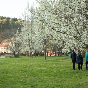 amalurra retreat center entorno natural